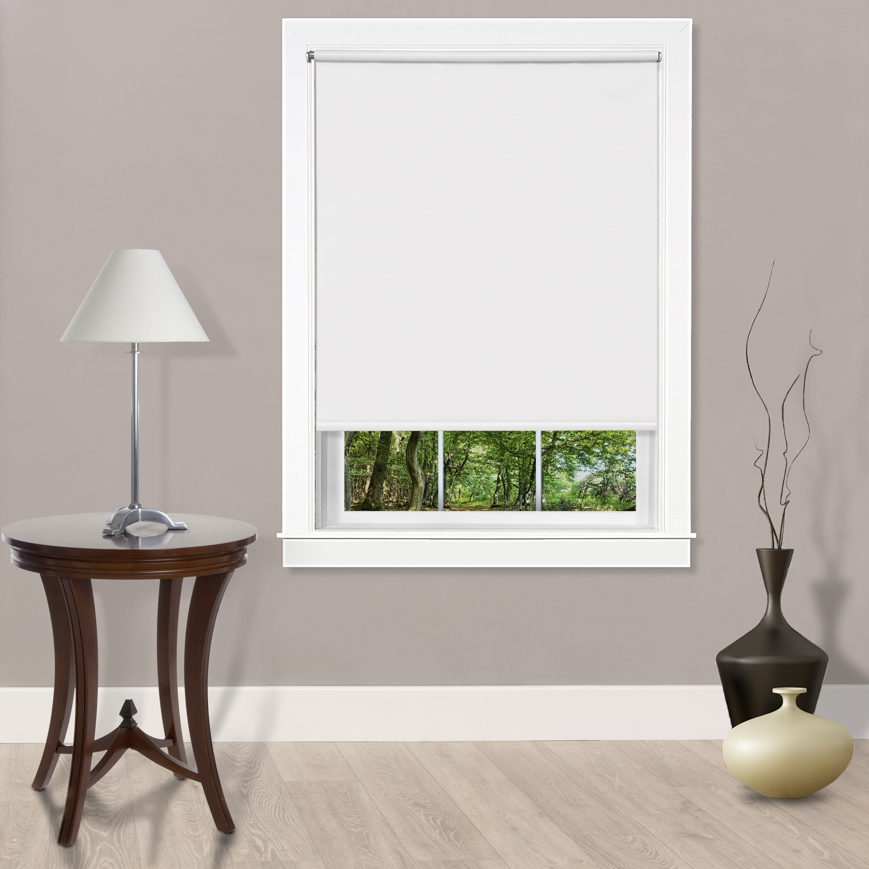 Cords Free Tear Down Light Filtering Window Shade Shades